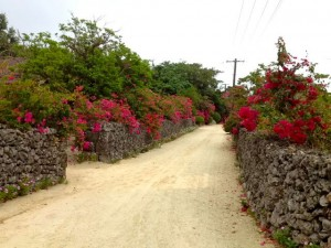 Taketomi street 300x225 Taketomi Island   A gem that takes you back in time (Okinawa Part 4)